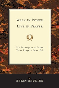 Cover of Walk in Power, Live in Prayer by Brian Brunius